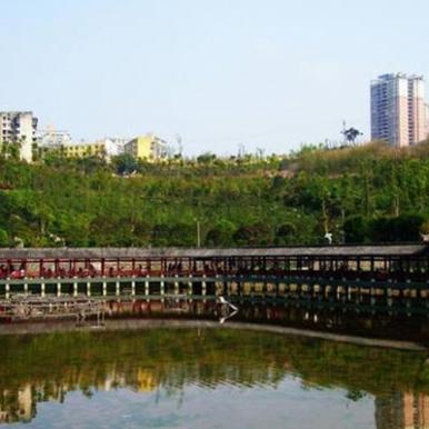 两江新区2年内将建10大绿地工程